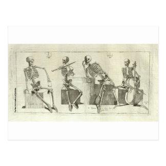 Skeleton Musicians Postcard
