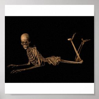 Skeleton on Belly Poster