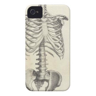Skeleton Torso iPhone 4 Cases