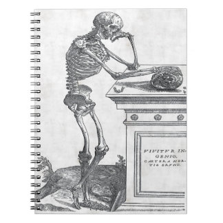 Skeleton With Skull Notebook