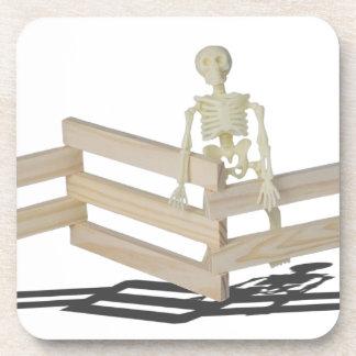 SkeletonAtFence062115 Coasters