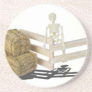 SkeletonBalesOfHayFence062115 Beverage Coasters