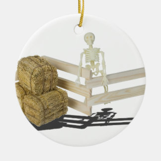 SkeletonBalesOfHayFence062115 Round Ceramic Ornament