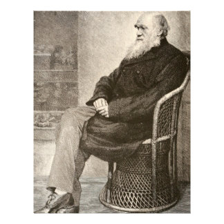 Sketch of Charles Darwin, published in 1891 Letterhead Template