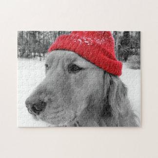 Ski Dog Golden Retriever Jigsaw Puzzle