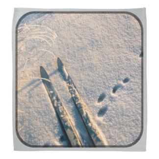 Ski track bandanna