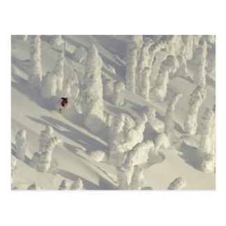 Skieur alpin dans les snowghosts épais à grand cartes postales