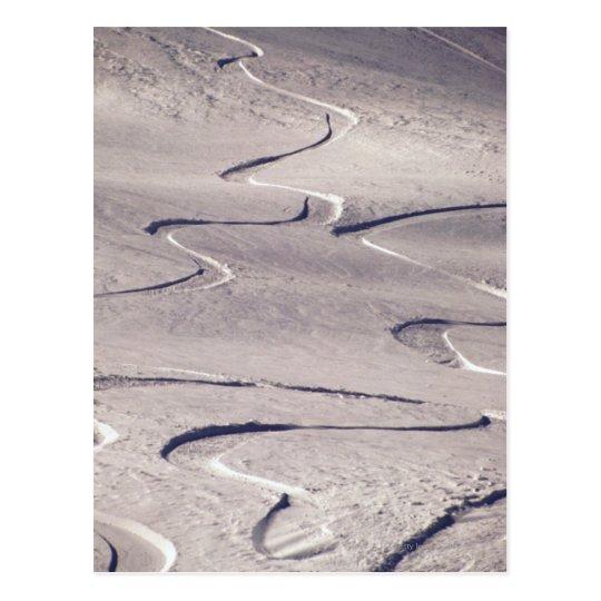 Skiing Tracks Postcard