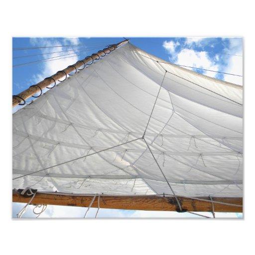 skipjack sail photo print