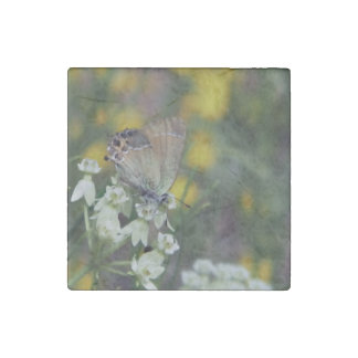 skipper butterfly on a flower stone magnets