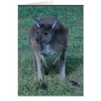 Skippy  kangaroo Card