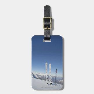 Skis and Ski Poles Luggage Tag