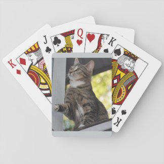 Skittles The Cat Playing Cards