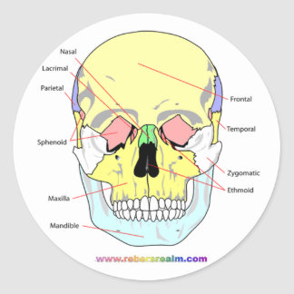 Skull (front) classic round sticker