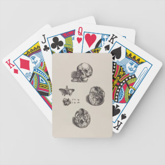 Skull - Icones Anatomicae Bicycle Playing Cards