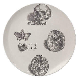 Skull - Icones Anatomicae Party Plates