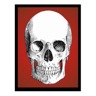 Skull Postcard (Red)