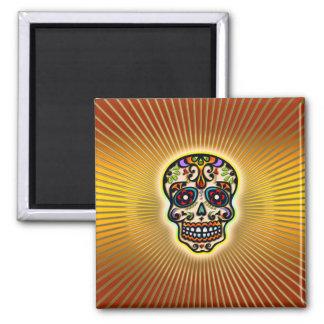 skull-strahlen.png magnet