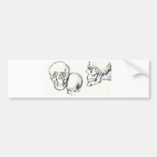 skulls bumper sticker