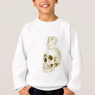 Skulls of human and ape on top