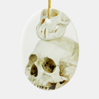 Skulls of human and ape on top ceramic oval ornament