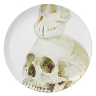 Skulls of human and ape on top dinner plates