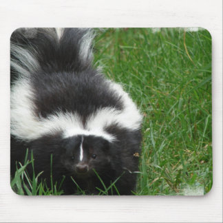Skunk Mouse Pad