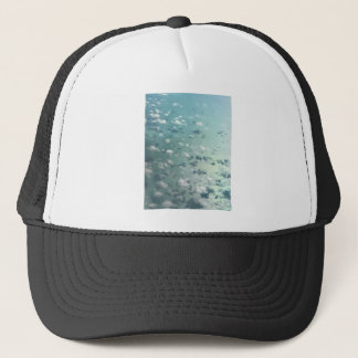 Sky and clouds trucker hat