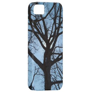 Sky and Serenity I Phone 5 Case iPhone 5 Cover