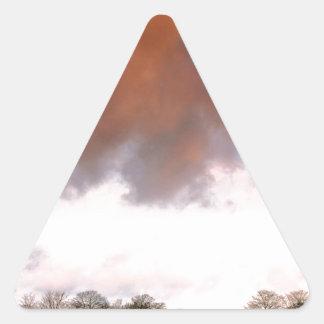Sky Auburn Triangle Sticker