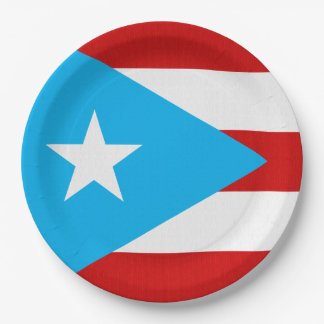 Sky Blue Puerto Rican Flag Party 9 Inch Paper Plate