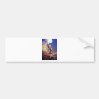 Sky Bumper Sticker