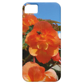 sky, flowers and bee iPhone 5 covers