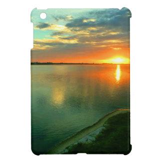 Sky High Sunset iPad Mini Cases