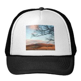 Sky Highland Tree Trucker Hat