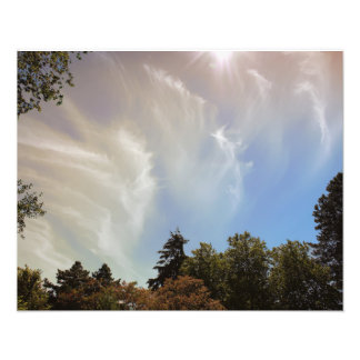 Sky over Seattle Zoo Photograph