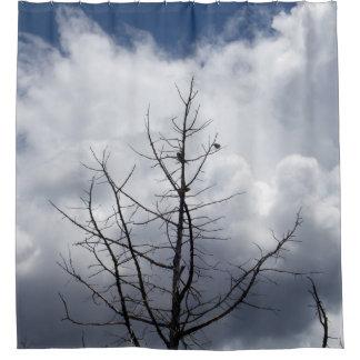 Sky Perch