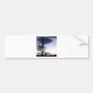 Sky Shepards Delight Bumper Sticker