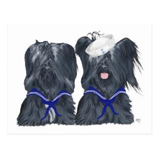 Skye Terrier Sailors Post Cards