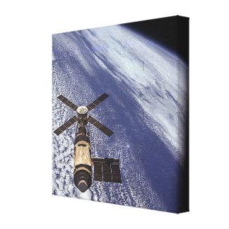Skylab Canvas Print