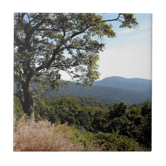 Skyline Drive Mountain View Tiles