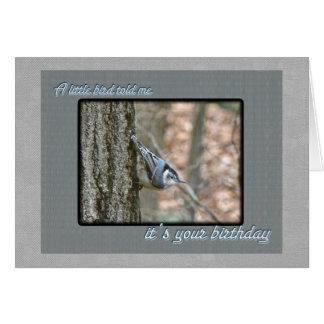 Slate Gray Nuthatch Birthday Songbird Card