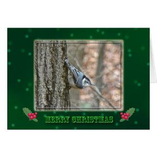 Slate Gray Nuthatch Christmas Songbird Card