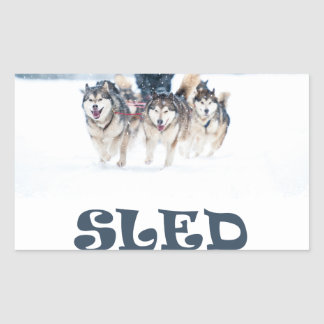 Sled Dog Day - Appreciation Day