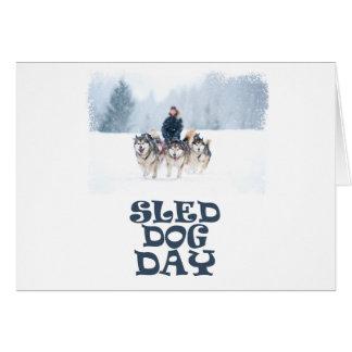 Sled Dog Day - Appreciation Day Card