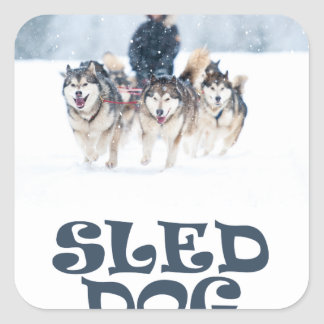 Sled Dog Day - Appreciation Day Square Sticker