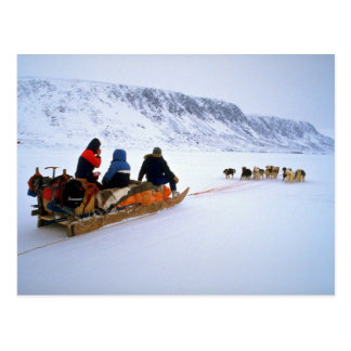 Sled dog tour, South Baffin Island Post Card