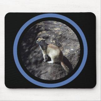 Sleek Squirrel - Multi Frame Mouse Pad
