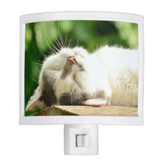 Sleepin g Cat Nite Light