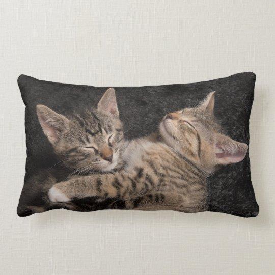 Sleeping baby cats lumbar pillow